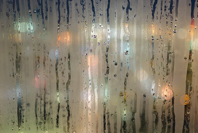Condensation on glass.jpg