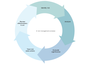 086 Fig 1 Risk Management Process 290.png