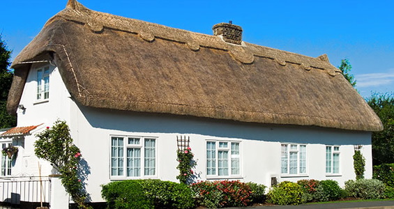 Image result for thatch roofing