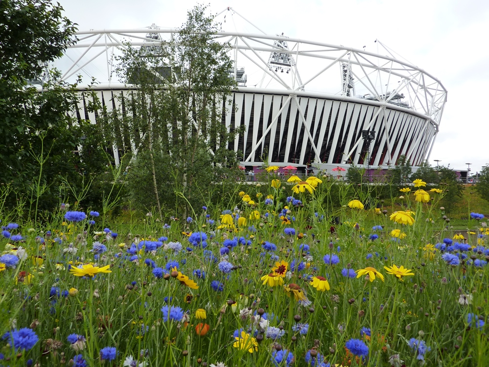 London 2012 Olympic park landscape image 3.JPG