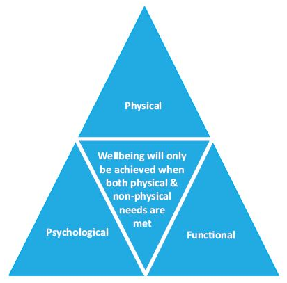 Wellbeingtriangle.png