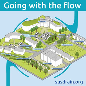 Going with the flow web image.jpg