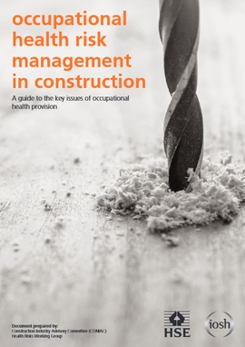 File:Occupational health risk management in construction.jpg