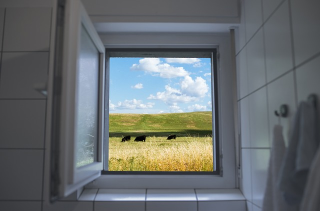 File:Open window.jpg