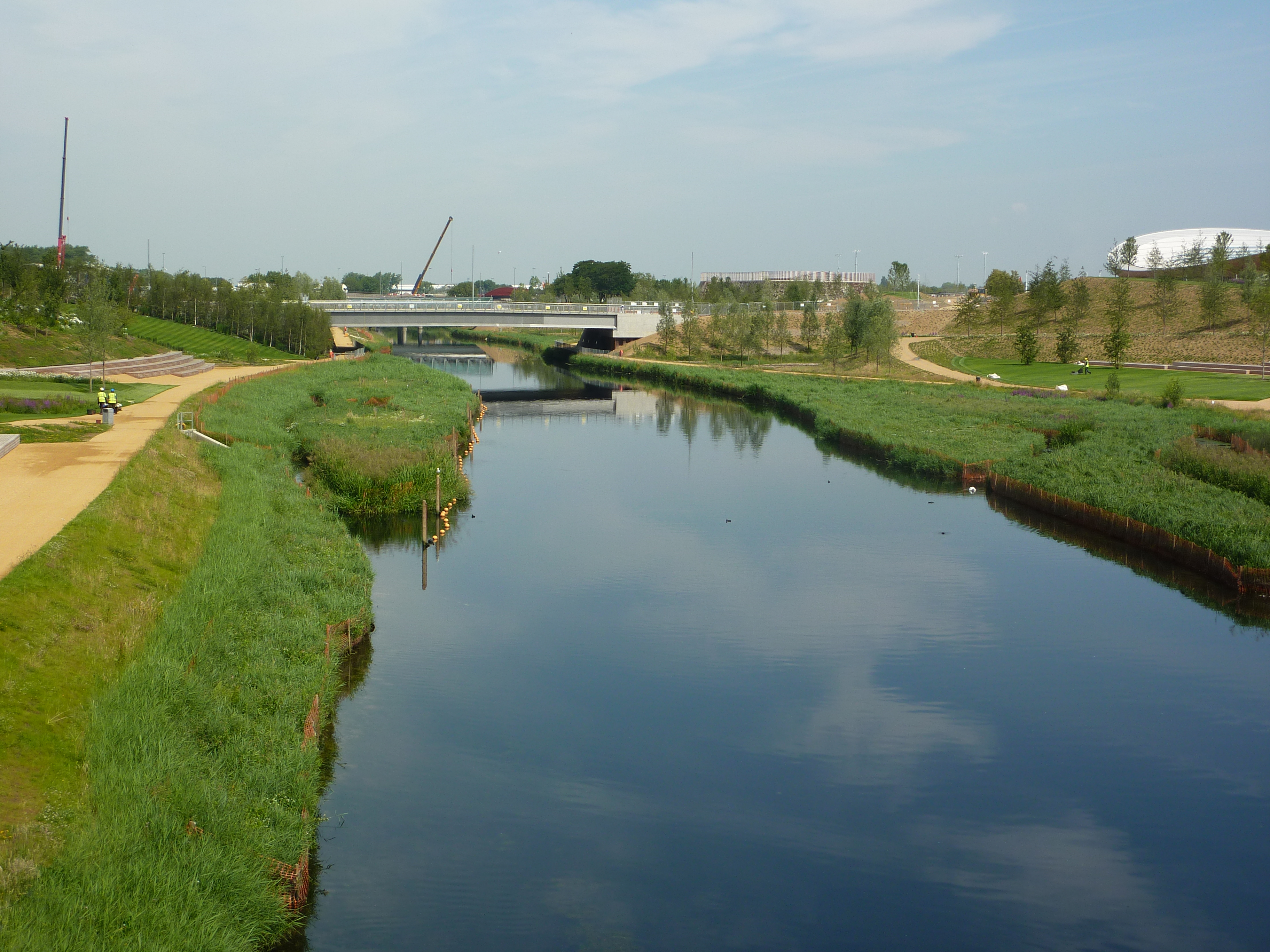 Reedbeds on the Olympic Park.JPG