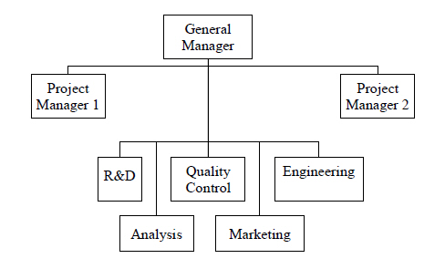 Modified project organisation structure.jpg