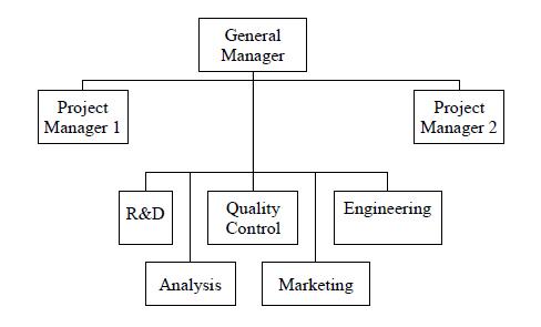 Organizational Behavior - Groups