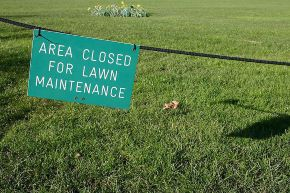 LawnMaintenanceSign290.jpg
