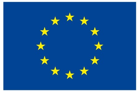 European flag.png