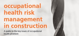 File:Occupational health risk management in construction 270.jpg