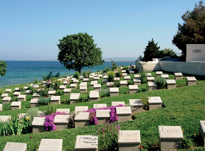 Beach Cemetery 290.png