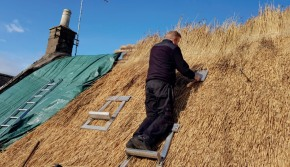 Rethatching in progress in Auchtermuchty 290.jpg