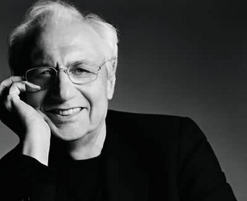 Frank Gehry Designing Buildings Wiki