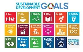 Sustainable-goals290.jpg