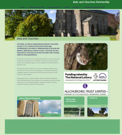 File:Bats in Churches website171117.png