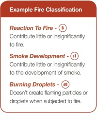 Example Fire Classification.jpg