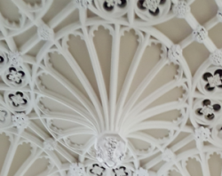 2017 plasterwork S OReilly.png
