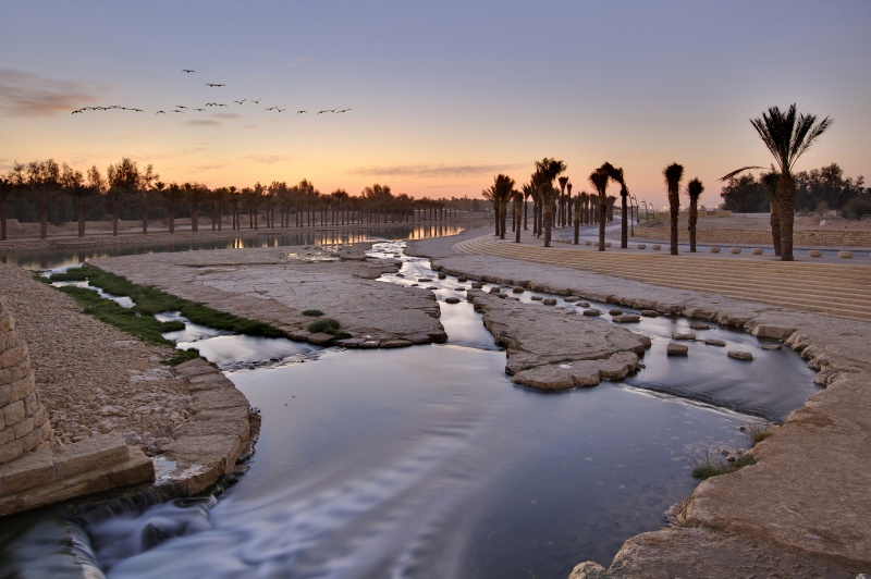 File:Wadi Hanifah Wetlands Buro Happold.jpg